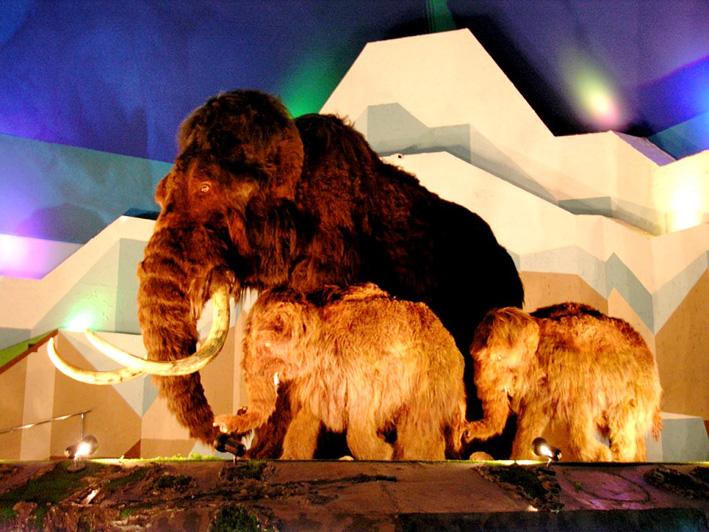 для родителей выставка ледниковый период в новосибирске тц юпитер пропускает петли